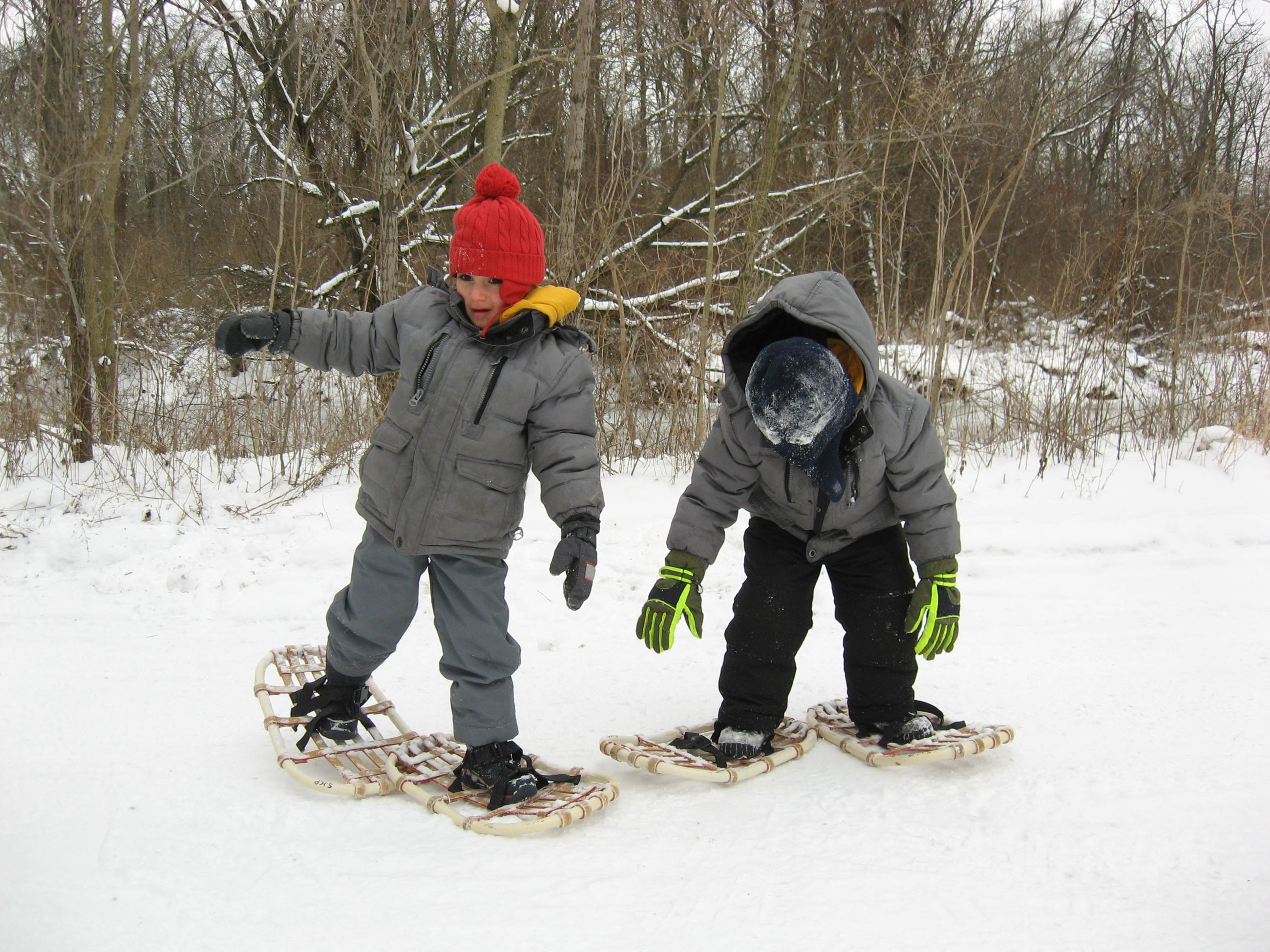 Children walk in snowshoes