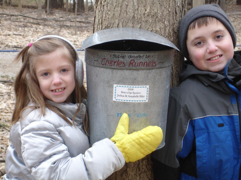 kids and their maple sap bucket